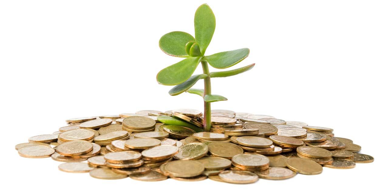 Crédit d'impôt rénovation travaux écologie